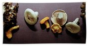 An Assortment Of Mushrooms Beach Towel