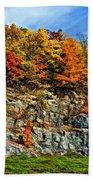 An Autumn Day Painted Beach Towel