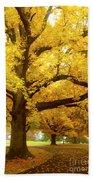 An Autumn Walk - 2 Beach Towel