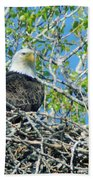 An Eagle In Its Nest  Beach Towel