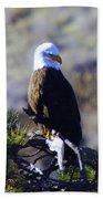 An Eagle In The Sun Beach Towel