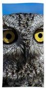 An Owl Beach Towel