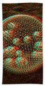 Anaglyph Of Volvox A Spherical Colonial Green Alga Beach Towel by Russell Kightley