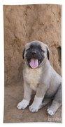 Anatolian Shepherd Puppy Beach Towel