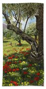 Andalucian Olive Grove Beach Towel