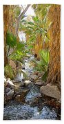 Andreas Creek In Andreas Canyon In Indian Canyons-ca Beach Towel