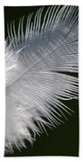 Angel Feather Beach Towel