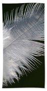 Angel Feather Beach Towel