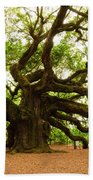 Angel Oak Tree 2009 Beach Towel by Louis Dallara