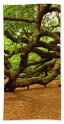 Angel Oak Tree Branches Beach Towel