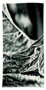 Angel Wing Variation Black White Beach Towel