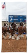 Anheuser Busch Clydesdales Pulling A Beer Wagon Usa Rodeo Beach Towel