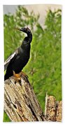 Anhinga Bird On Stump Beach Towel