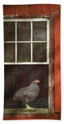 Animal - Bird - Chicken In A Window Beach Towel