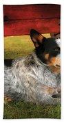 Animal - Dog - Always Faithful Beach Towel by Mike Savad
