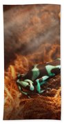 Animal - Frog - Lick The Green Frog Beach Sheet