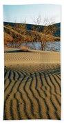 Animal Tracks In The Sand Beach Towel