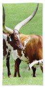 Ankole And Texas Longhorn Cattle Beach Towel