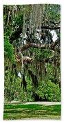 Savannah National Wildlife Refuge Beach Towel