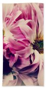 Antique Pink And White Daisies Beach Towel