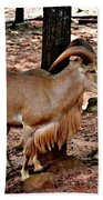 Aoudad Plus 2 Beach Towel