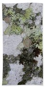 Appalachian Stone Flora Beach Towel