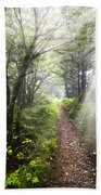 Appalachian Trail Beach Towel by Debra and Dave Vanderlaan