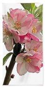 Apple Blossom Vertical Beach Towel