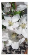 Apple Blossoms 2 Beach Towel