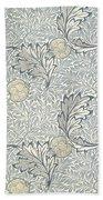 Apple Design 1877 Beach Towel