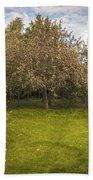 Apple Orchard Beach Towel