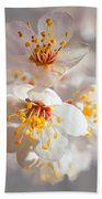 Apricot Blooms Beach Towel