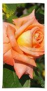 Apricot Nectar Rose Beach Towel