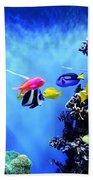 Aquarium 1 Beach Sheet