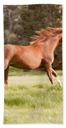 Arabian Horse Running Free Beach Towel