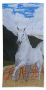 Araboam Stallion 3 Beach Towel