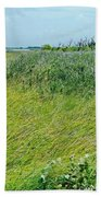 Aransas Nwr Coastal Grasses Beach Towel