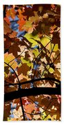 Arboretum Fall Beach Towel