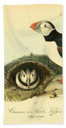 Arctic Puffin Beach Towel by Philip Ralley