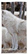 Arctic Wolf Pair Beach Towel