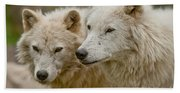 Arctic Wolf Pictures 1174 Beach Towel