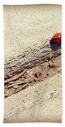 Arduous Journey Beach Towel