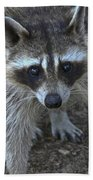 Are You My Mother? Beach Towel