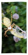 Argiope Spider Top Side Horizontal Beach Towel