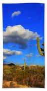 Arizona Landscape 2 Beach Sheet