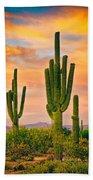 Arizona Life Beach Towel