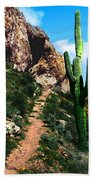 Arizona Saguaro Tonto National Monument Beach Towel