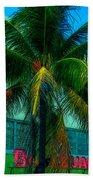 Art Deco Boulevard Hotel Miami Beach Towel