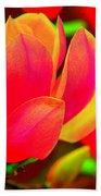 Artdeco Flower Beach Towel
