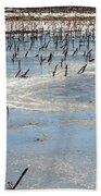 Artic Thaw Beach Towel